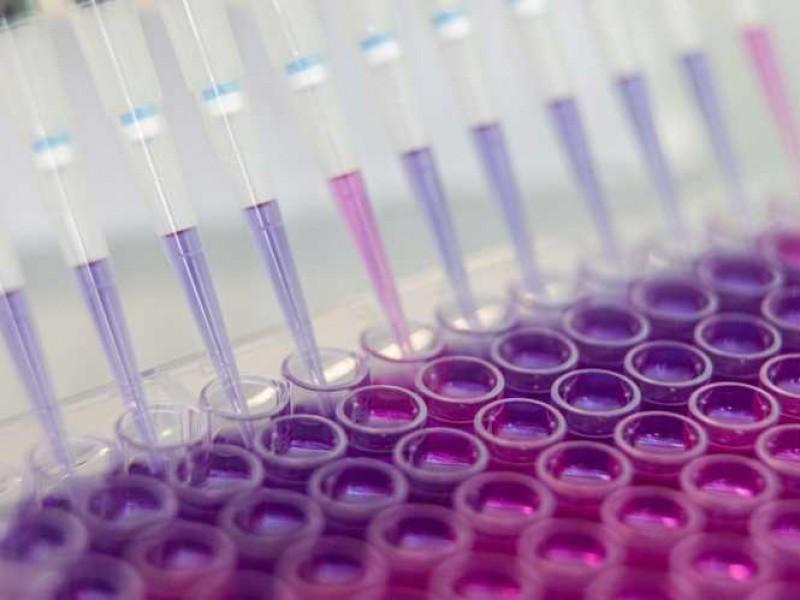 Véktor preparará 10 mil dosis de vacuna Covid-19 por semana