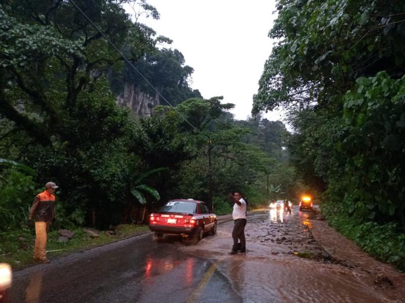 Veracruz con 21 municipios afectados tras Nicholas: SPC
