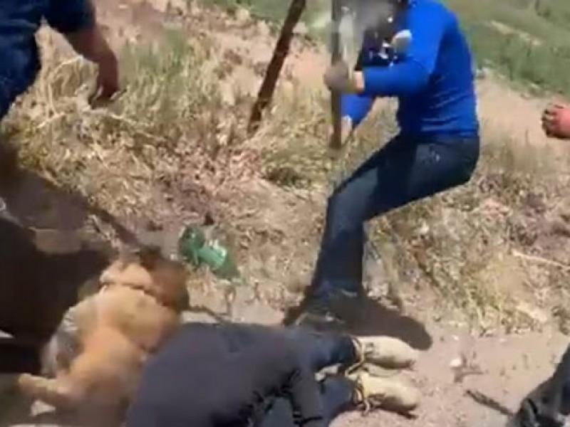 Video:Mujer ataca con azadón a perro y a un hombre