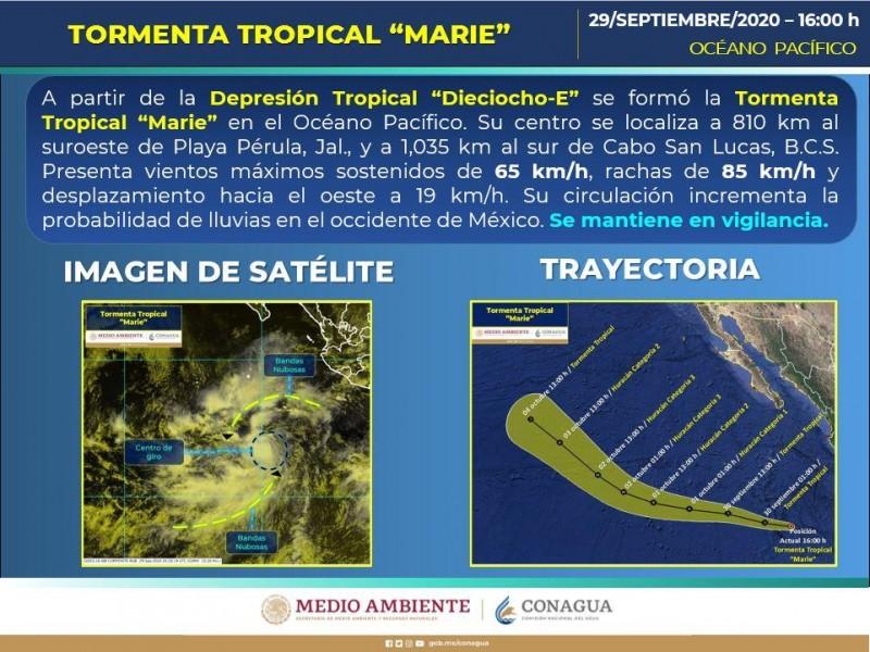Vigilan autoridades tormenta tropical