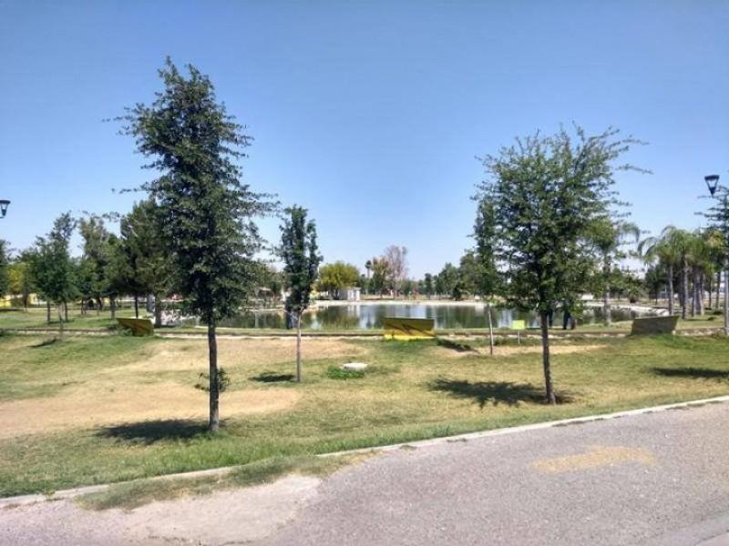 Vigilarán componentes de materiales biodegradables en Torreón