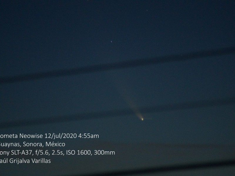 Visible cometa Neowise en Guaymas