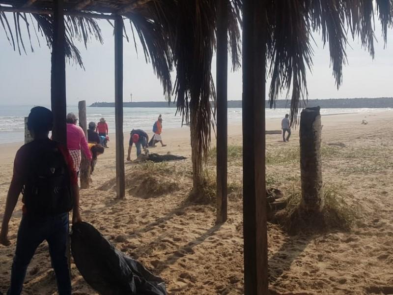 Voluntarios realizaron limpieza de playa