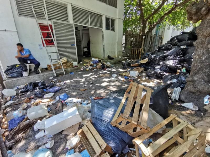 Ya se reactivo recolección de basura a HAEV