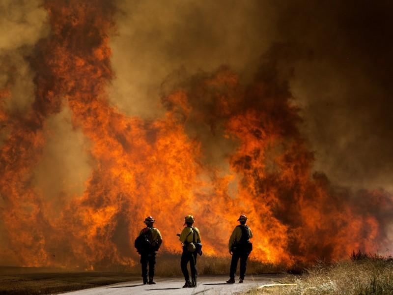 Ya suman 142 mil hectáreas afectadas por incendios en California