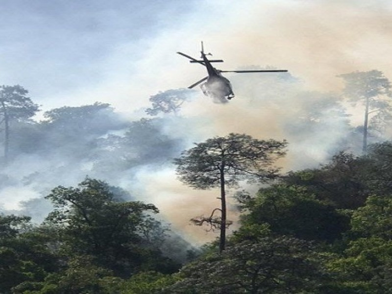 Zacatecas no cuenta con helicóptero cisterna para incendios forestales