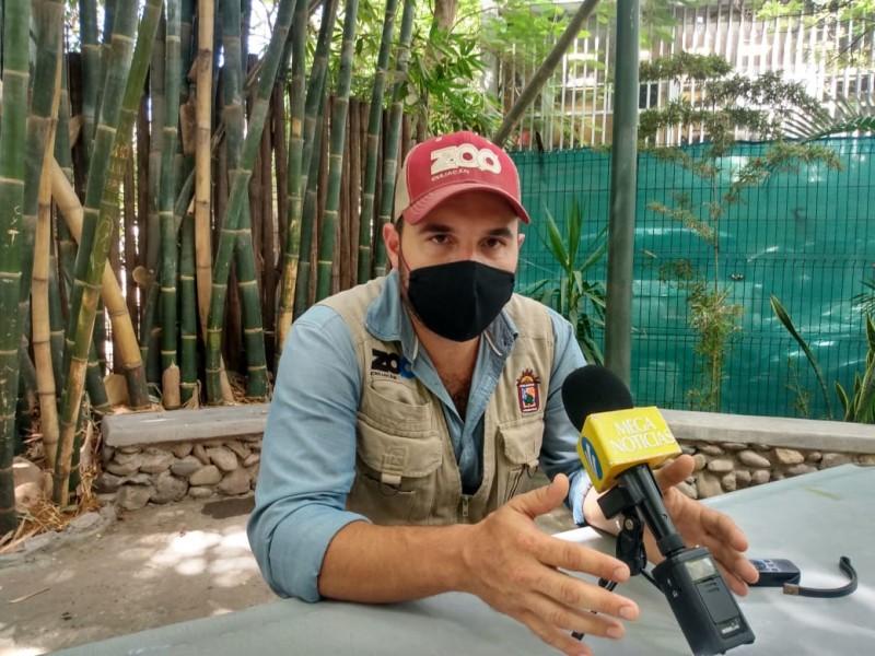 Zoológico de Culiacán cumple con las medidas sanitarias: Director
