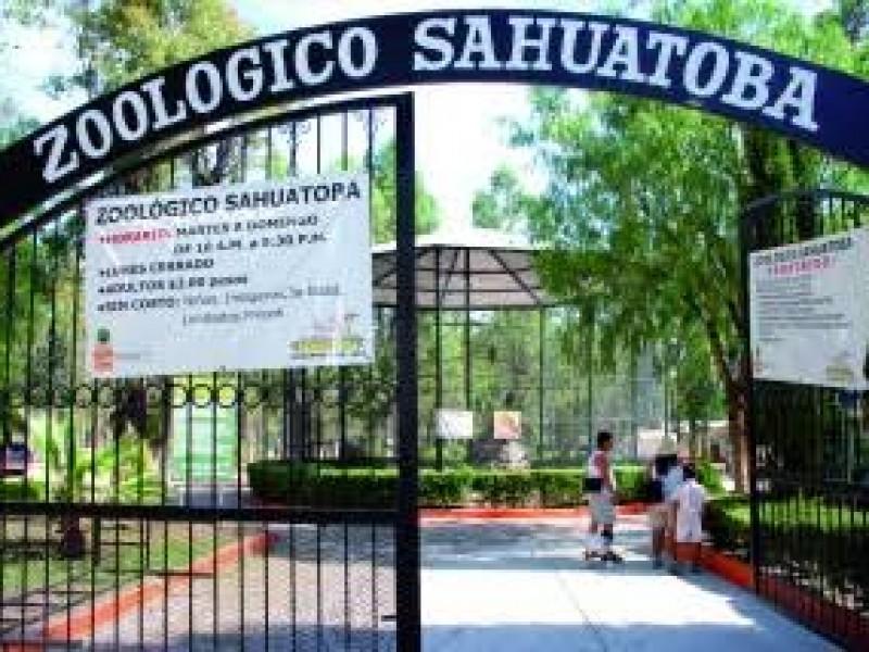 Zoológico permanecerá cerrado como medida de sanidad