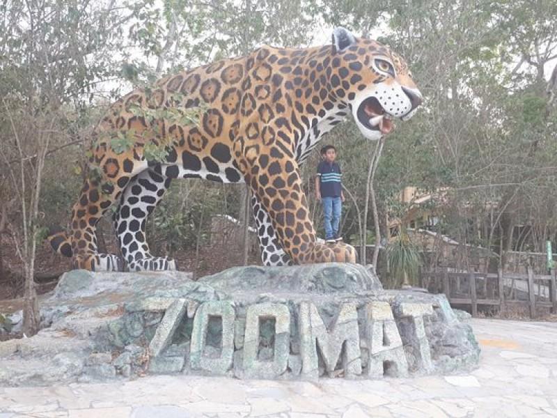 ZOOMAT con cifra récord de visitantes